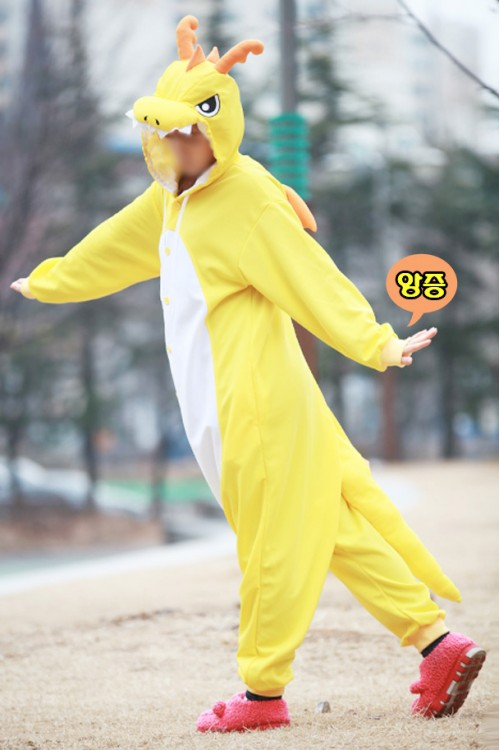 Yellow Dragon Kigurumi 2016 Animal Pajamas
